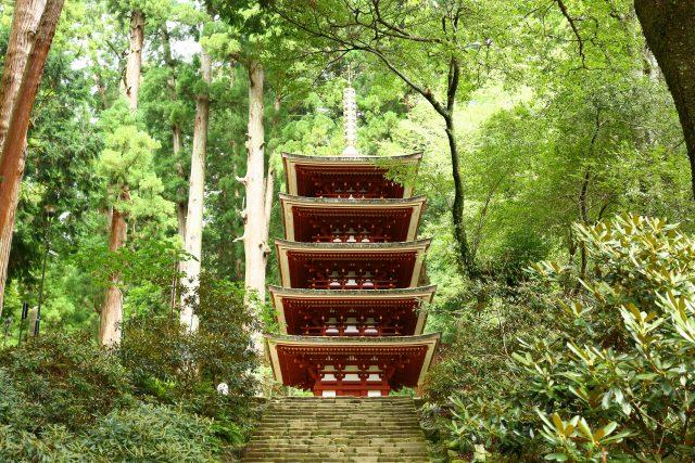 緑響く室生寺