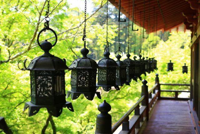 青紅葉輝く談山神社