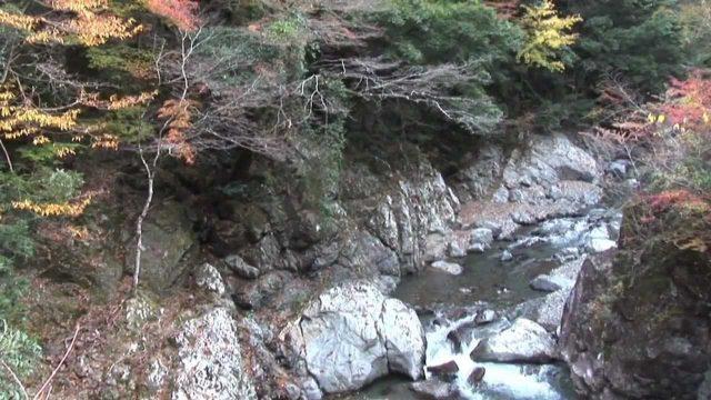 奈良 川上村(4分53秒)