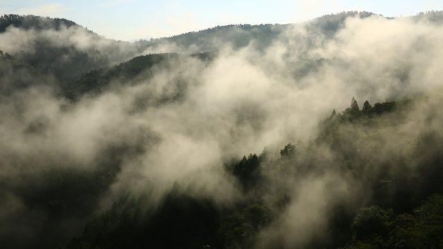 吉野に山霧走る