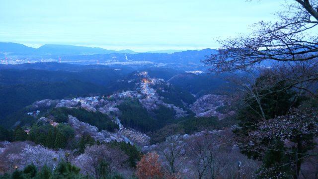 桜満開の吉野山